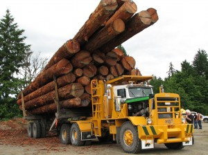 Fully loaded Hayes HDX logging truck